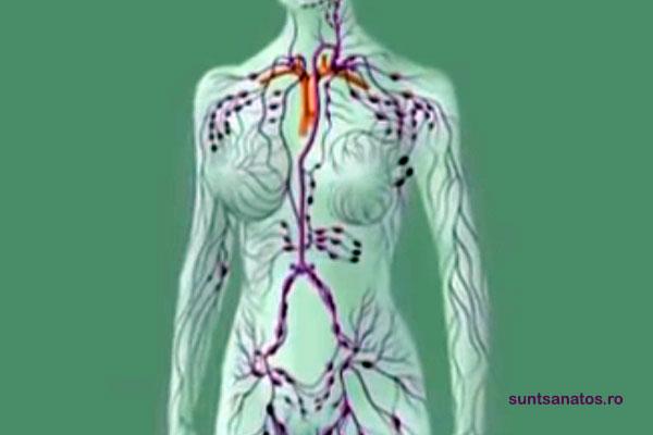 cancer limfatic diagnostic pentru tratamentul și prevenirea viermilor