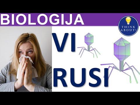 Virusi (biologija) za 5 razred, Reprogramiranje Zivotne Matrice Pomocu Eft-A - PDF Free Download