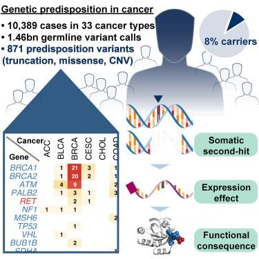 cancerul poate fi genetic