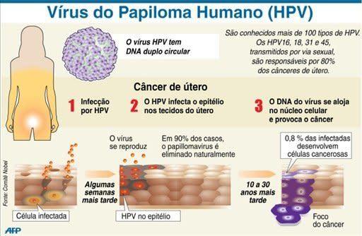 cancer e hpv)