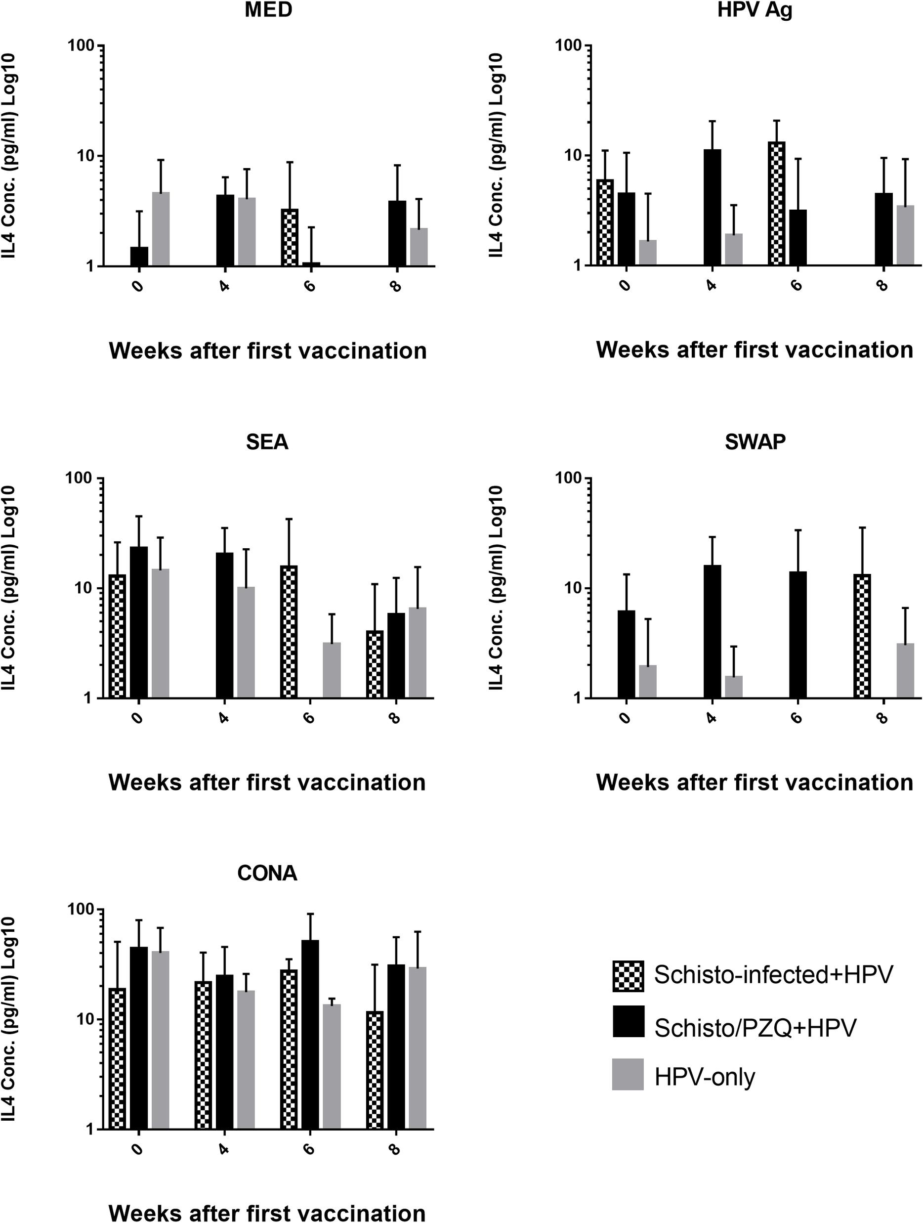 Timp pdf portugues - Humanen papillomavirus (hpv 16 und 18)