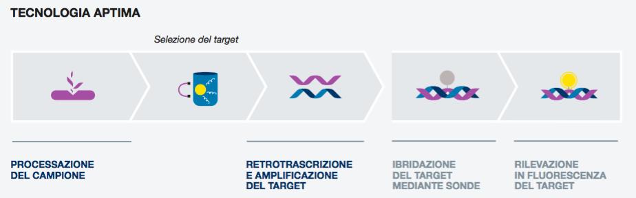 genoma hpv ad alto rischio)