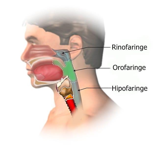 cancerul rinofaringian simptome