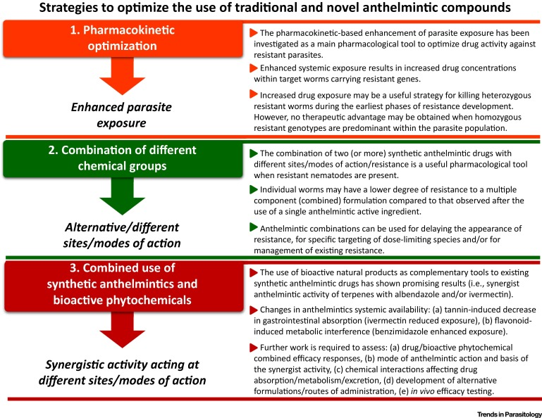 antihelmintic eficient