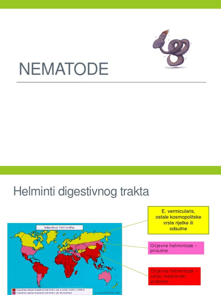 enterobius vermicularis dijagnoza