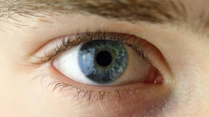 cancer la ochi tratament ciclul de dezvoltare helmint