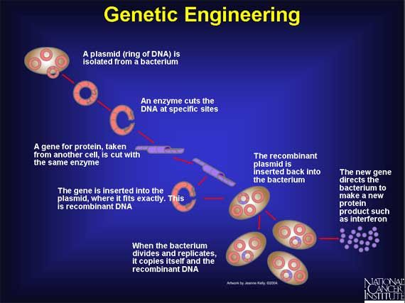 cancer and genetic engineering)
