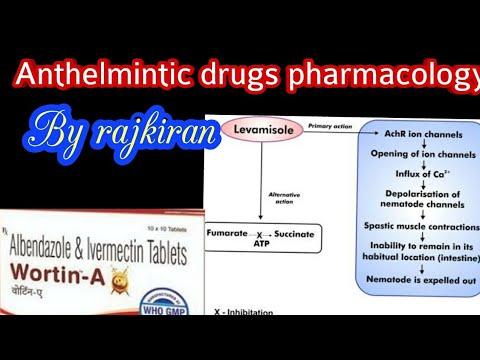 papillomavirus naturopathie