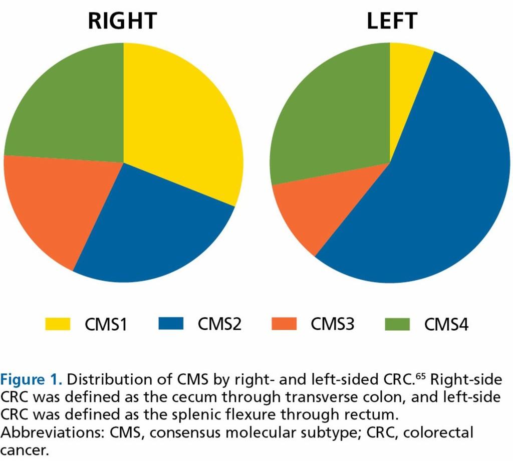 colorectal cancer consensus molecular subtypes