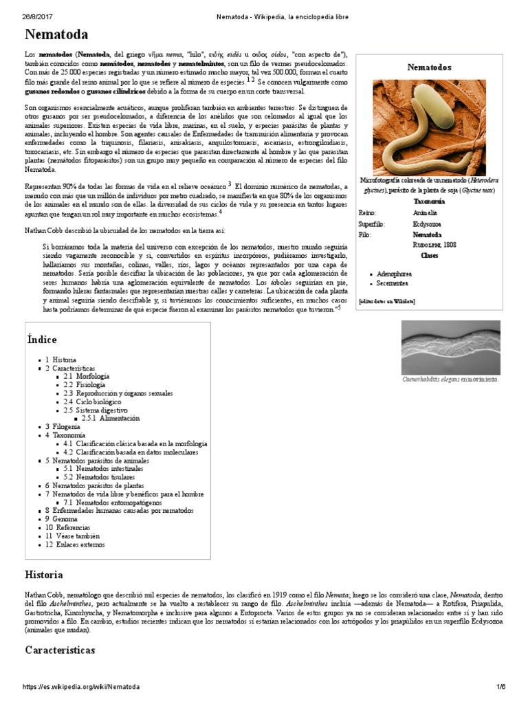 enterobius vermicularis reino filo classe)