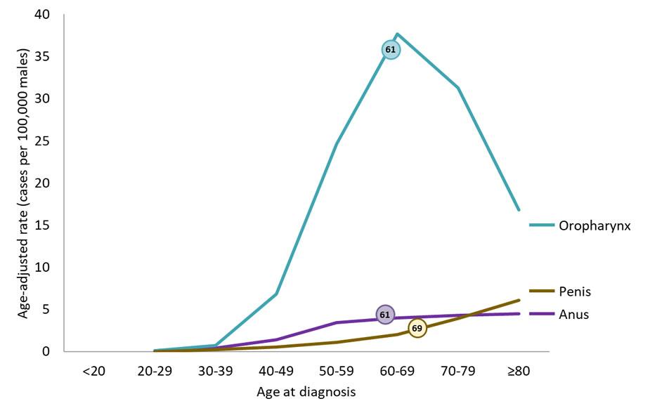 Hpv causes bv, Infecţia cu virusul papiloma uman şi strategii de implementare a imunizării