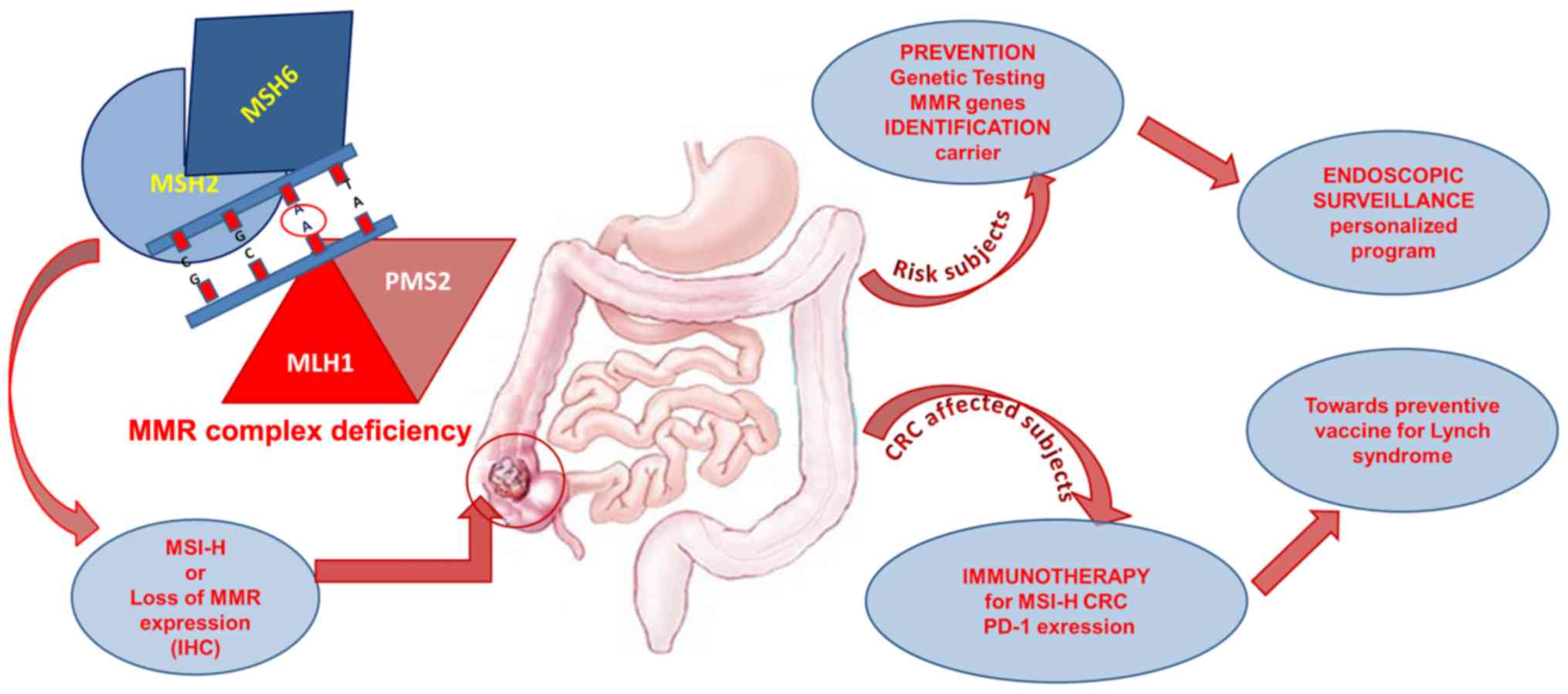 Hpv In Tongue Symptoms Squamous Papilloma Tongue Symptoms Traducerea Papilloma In 25 De Limbi