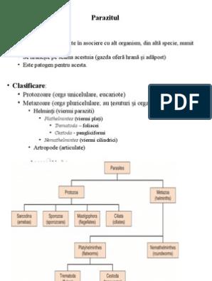 Giardia si cryptosporidium in apa de baut - divastudio.ro