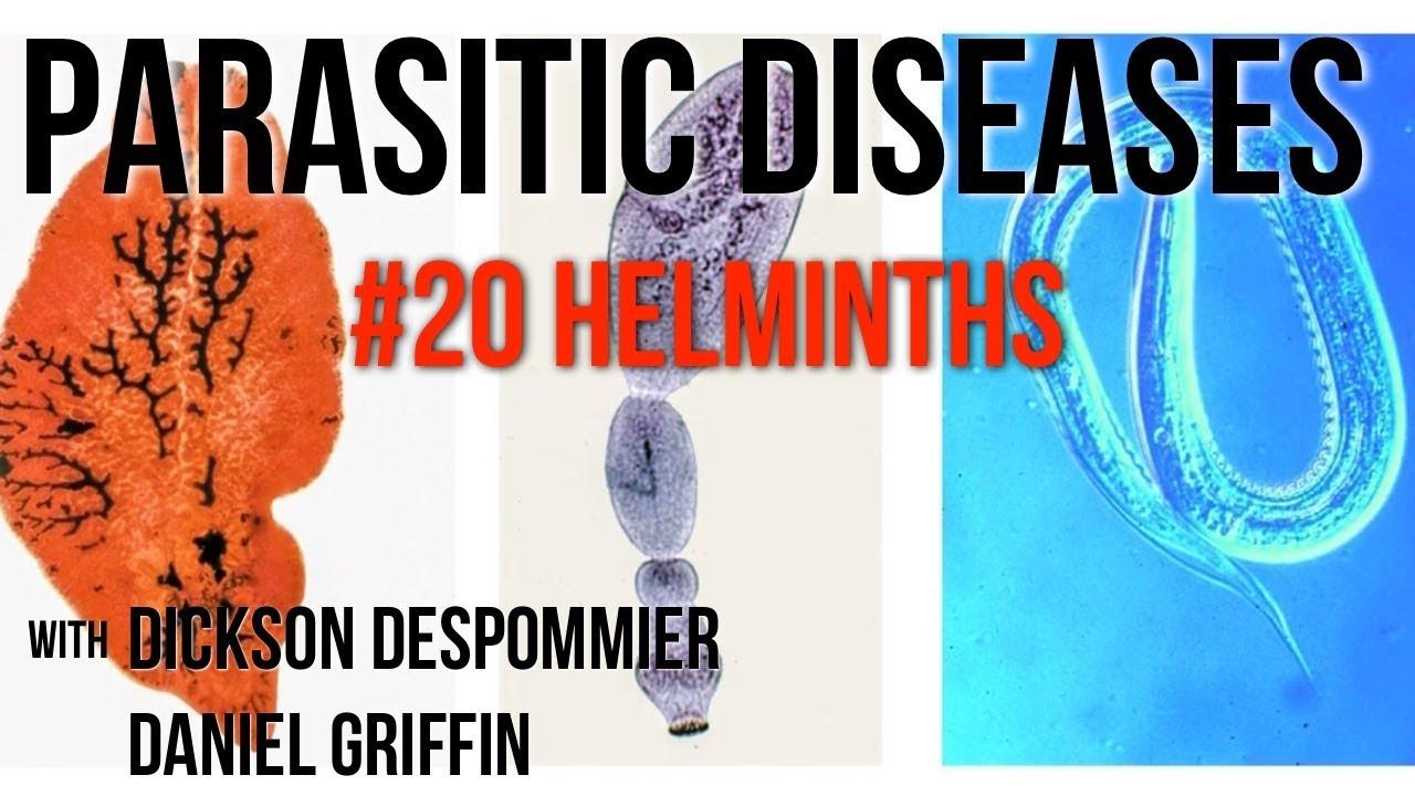 helminths ce simptome