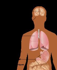 hpv vaccine bivirkninger 2020 hpv high risk screen