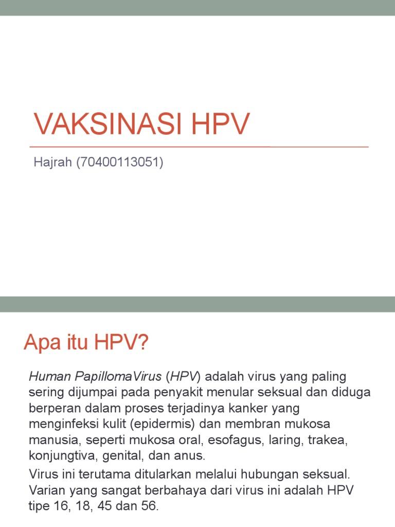 human papilloma adalah