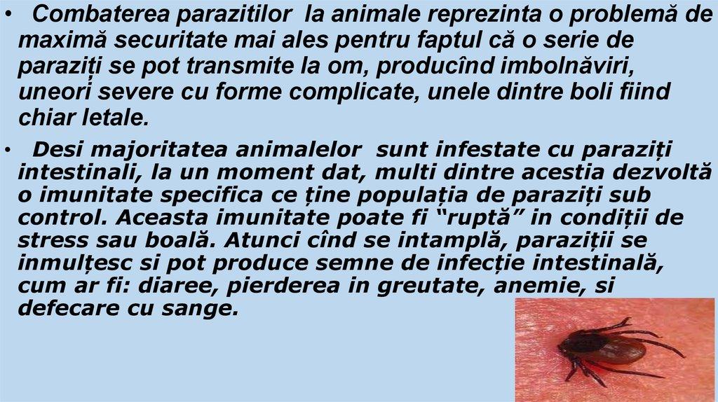 prevenirea paraziților de viermi la om)